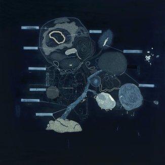 塑料脑浆plastic brains 140x140cm 2009